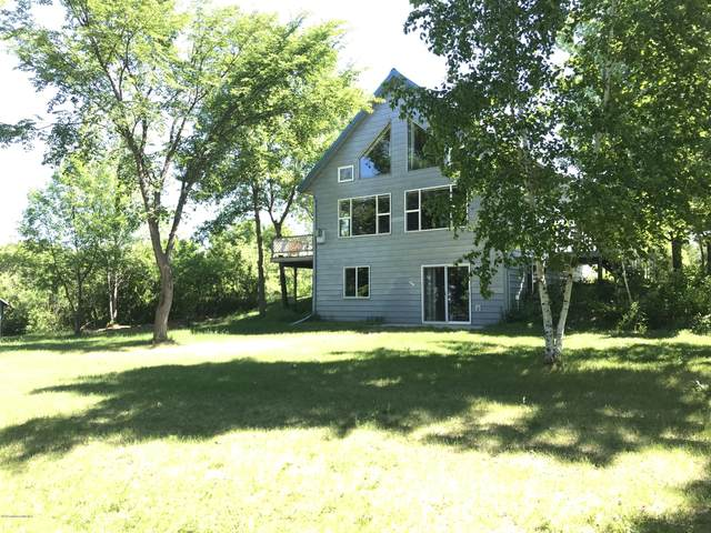 40020 Crane Lake Dr Drive, Battle Lake, MN 56515 (MLS #20-30639) :: FM Team