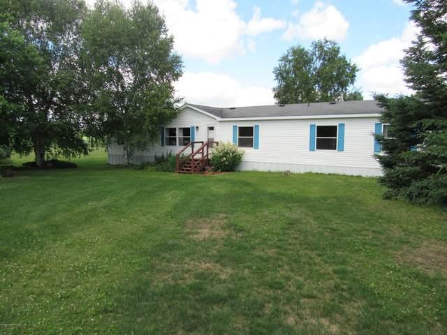 17831 219th Avenue, Nevis, MN 56467 (MLS #20-30872) :: Ryan Hanson Homes- Keller Williams Realty Professionals