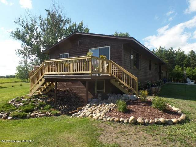 29533 505th Avenue, Henning, MN 56551 (MLS #20-31028) :: FM Team
