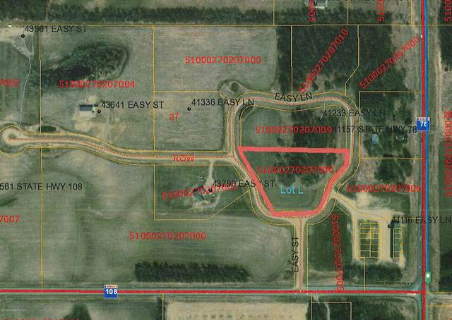 Lot  L Easy Lane, Perham, MN 56573 (MLS #20-32407) :: Ryan Hanson Homes- Keller Williams Realty Professionals