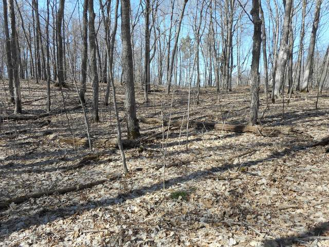 Lot 1 & 2 Campfire Road, Vergas, MN 56587 (MLS #20-32683) :: Ryan Hanson Homes- Keller Williams Realty Professionals