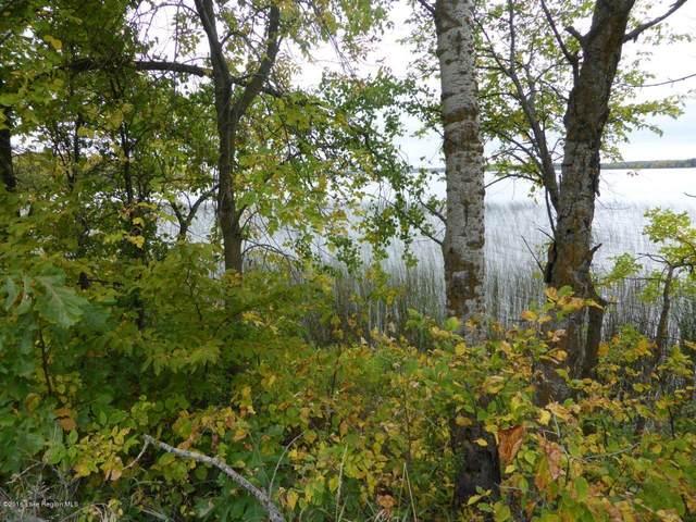 Xxx Stalker Lake Road, Battle Lake, MN 56515 (MLS #20-33247) :: RE/MAX Signature Properties