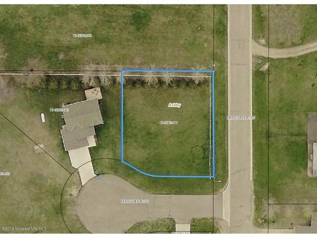 150 Birch Circle, Ashby, MN 56309 (MLS #20-33321) :: Ryan Hanson Homes- Keller Williams Realty Professionals