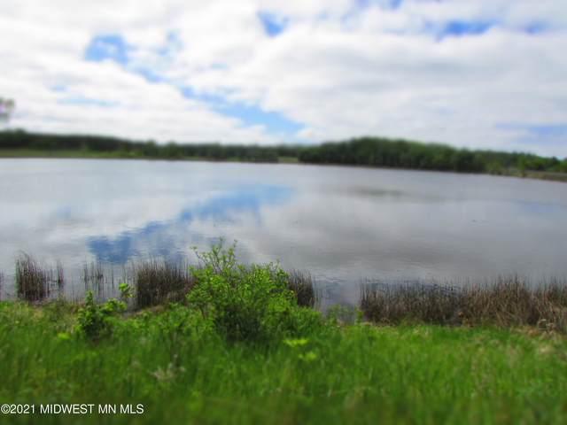 20 Acres Sybil Lake Road, Vergas, MN 56587 (MLS #20-33801) :: Ryan Hanson Homes- Keller Williams Realty Professionals