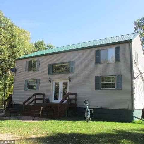 20798 527 Avenue, Henning, MN 56551 (MLS #6105272) :: Ryan Hanson Homes- Keller Williams Realty Professionals