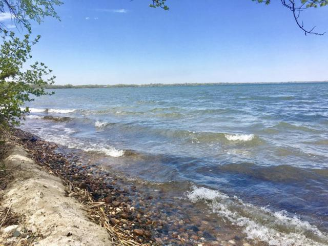 Lot 6 Coleman Road, Clitherall, MN 56524 (MLS #20-18623) :: Ryan Hanson Homes Team- Keller Williams Realty Professionals