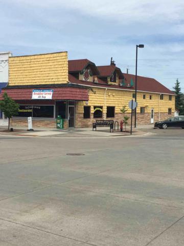 Address Not Published, Park Rapids, MN 56470 (MLS #20-21775) :: Ryan Hanson Homes- Keller Williams Realty Professionals