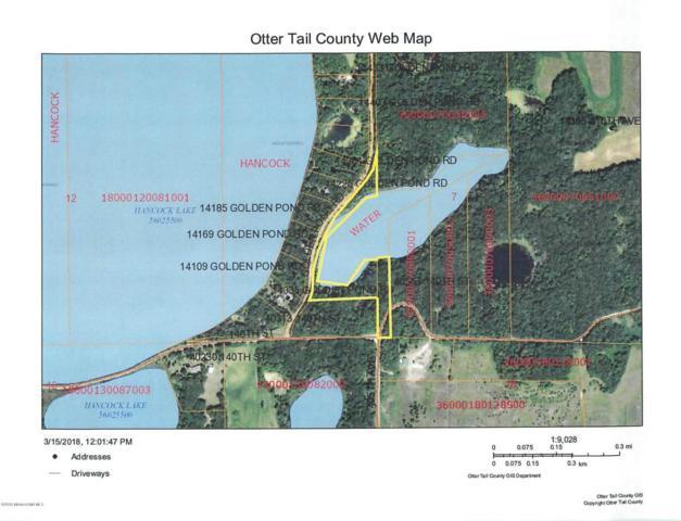 Xxx Golden Pond Rd., Battle Lake, MN 56515 (MLS #20-22305) :: Ryan Hanson Homes Team- Keller Williams Realty Professionals