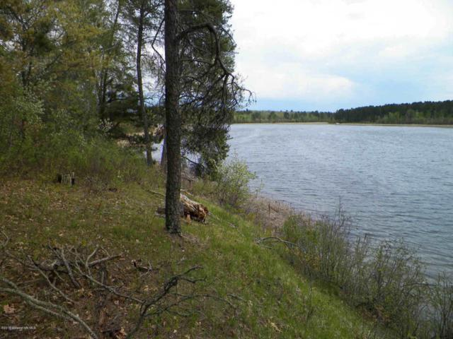 Address Not Published, Nevis, MN 56467 (MLS #20-22409) :: Ryan Hanson Homes- Keller Williams Realty Professionals