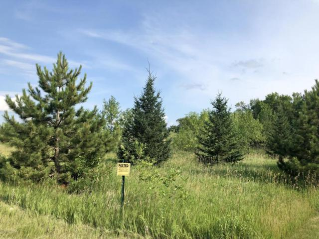 Tbd Canterbury Sands Trail, Battle Lake, MN 56515 (MLS #20-22621) :: Ryan Hanson Homes Team- Keller Williams Realty Professionals