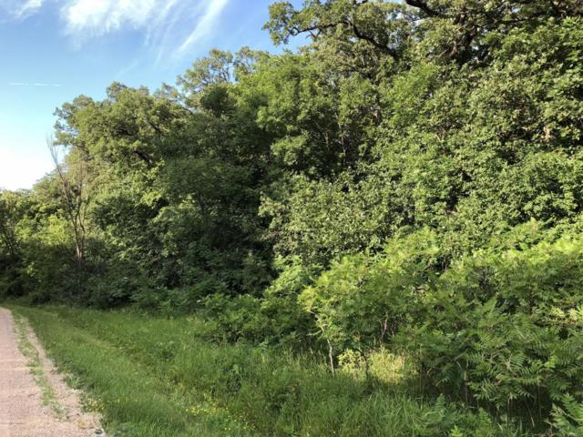Tbd Swan View Road, Fergus Falls, MN 56537 (MLS #20-22880) :: Ryan Hanson Homes Team- Keller Williams Realty Professionals