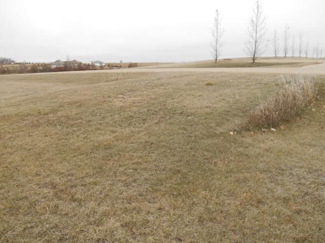 15166 Hill View Lane, Audubon, MN 56511 (MLS #20-23054) :: Ryan Hanson Homes Team- Keller Williams Realty Professionals