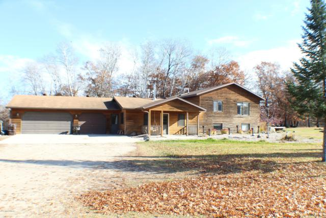 40523 Wren Loop, Battle Lake, MN 56515 (MLS #20-25055) :: FM Team