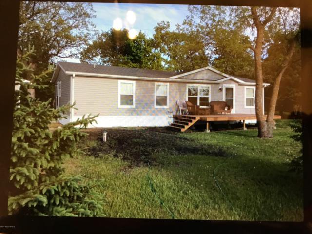 27156 Co Hwy 83, Battle Lake, MN 56515 (MLS #20-25622) :: Ryan Hanson Homes Team- Keller Williams Realty Professionals