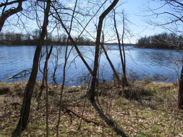 Tract C Leek Lake Drive, Vergas, MN 56587 (MLS #20-26420) :: Ryan Hanson Homes- Keller Williams Realty Professionals