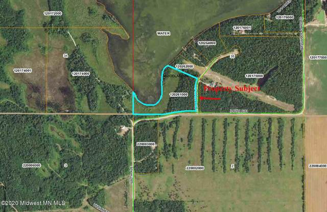 Tbd Basswood Road, Park Rapids, MN 56470 (MLS #20-32491) :: Ryan Hanson Homes- Keller Williams Realty Professionals
