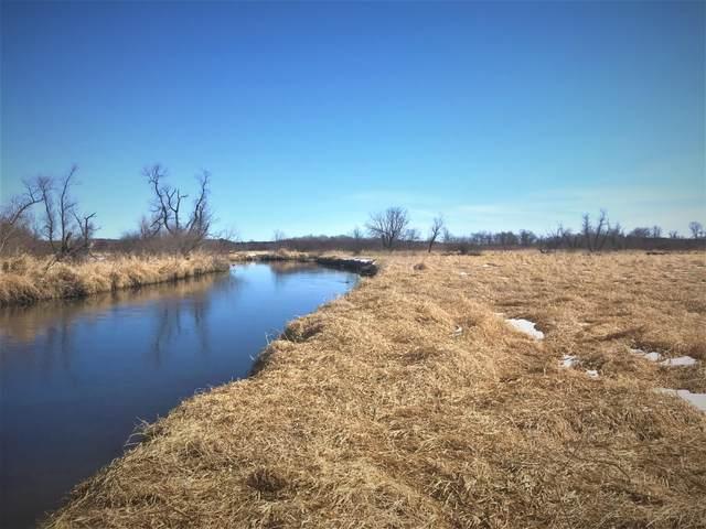 11441 Leaf River Road, Wadena, MN 56482 (MLS #20-32699) :: Ryan Hanson Homes- Keller Williams Realty Professionals