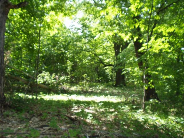 Lot 9 Bk 1 W Stalker Road, Dalton, MN 56324 (MLS #07-1674) :: FM Team