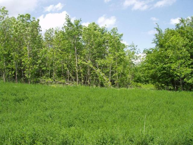 Lot 14 B 1 W Stalker Road, Dalton, MN 56324 (MLS #07-1681) :: FM Team