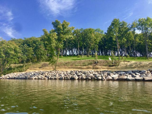 Lot 10 Coleman Road, Clitherall, MN 56524 (MLS #20-18625) :: Ryan Hanson Homes Team- Keller Williams Realty Professionals