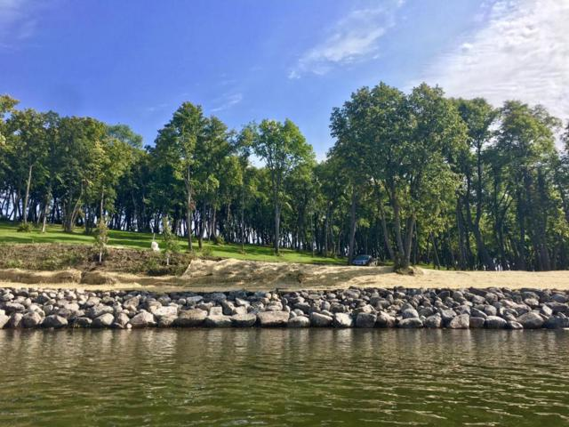 Lot 11 Coleman Road, Clitherall, MN 56524 (MLS #20-18626) :: Ryan Hanson Homes Team- Keller Williams Realty Professionals