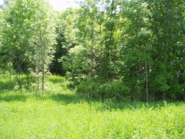 Lot 11 B 1 W Stalker Road, Dalton, MN 56324 (MLS #07-1678) :: FM Team