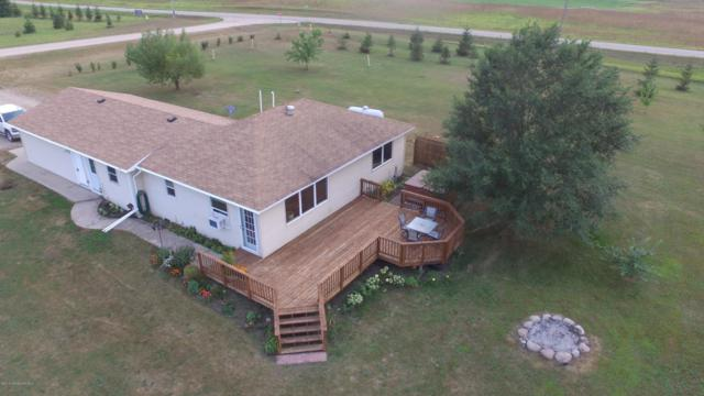 41051 429th Street, Perham, MN 56573 (MLS #20-24419) :: Ryan Hanson Homes- Keller Williams Realty Professionals