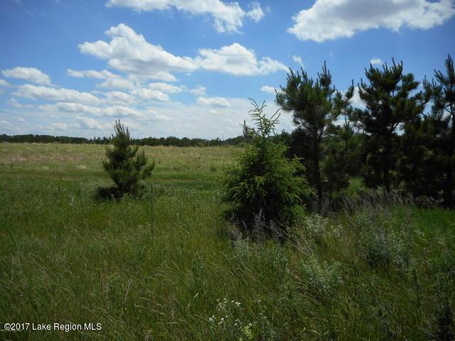 Turtle Bay Development, 425th Avenue, Perham, MN 56573 (MLS #20-20053) :: Ryan Hanson Homes Team- Keller Williams Realty Professionals