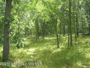 Xxxx Hwy 54, Detroit Lakes, MN 56501 (MLS #20-21957) :: Ryan Hanson Homes Team- Keller Williams Realty Professionals