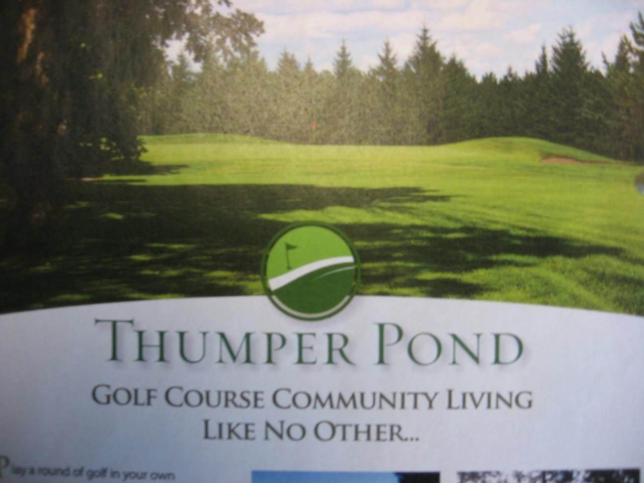 0000 Thumper Lodge Road - Photo 1