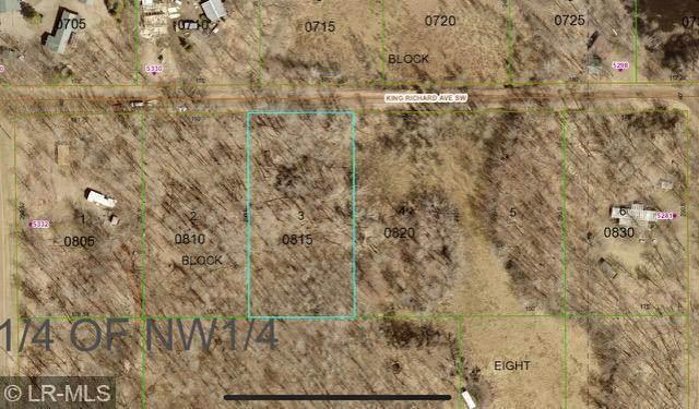 XXX King Richard Ave, Motley, MN 56466 (MLS #6104113) :: Ryan Hanson Homes- Keller Williams Realty Professionals