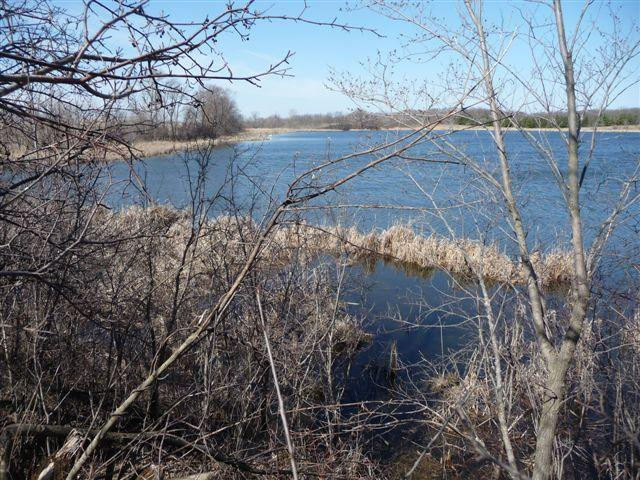 Lot 5 Co 19 Road, Ashby, MN 56309 (MLS #07-850) :: Ryan Hanson Homes Team- Keller Williams Realty Professionals