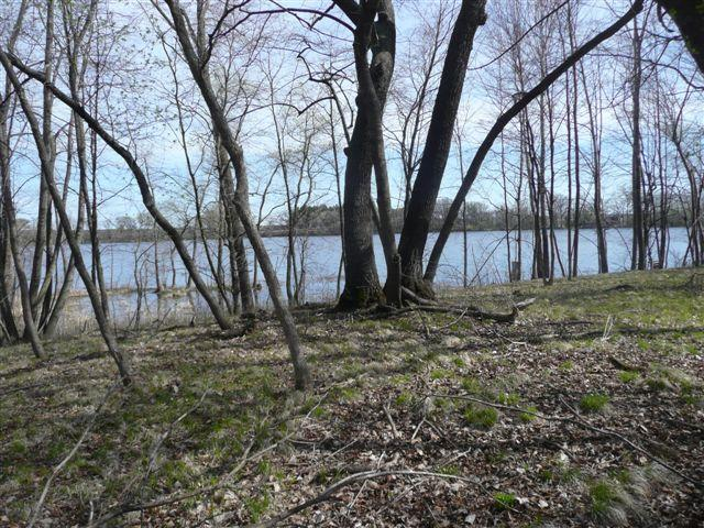Lot 1 Bluegill Bay Estates, Ashby, MN 56309 (MLS #20-20310) :: Ryan Hanson Homes Team- Keller Williams Realty Professionals