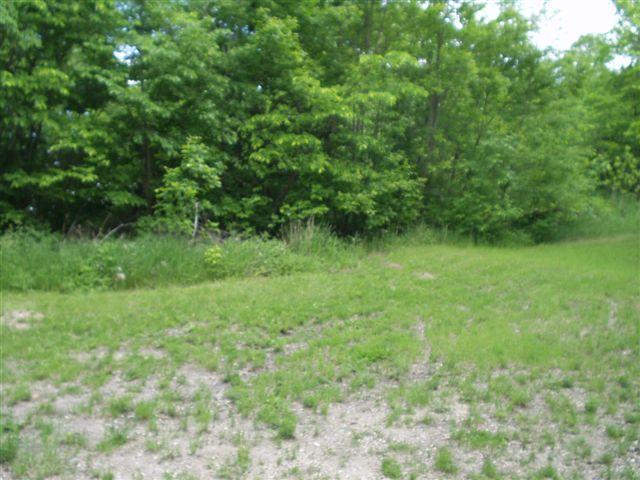 Lot 4 Bk 1 W Stalker Road, Dalton, MN 56324 (MLS #07-1665) :: Ryan Hanson Homes- Keller Williams Realty Professionals