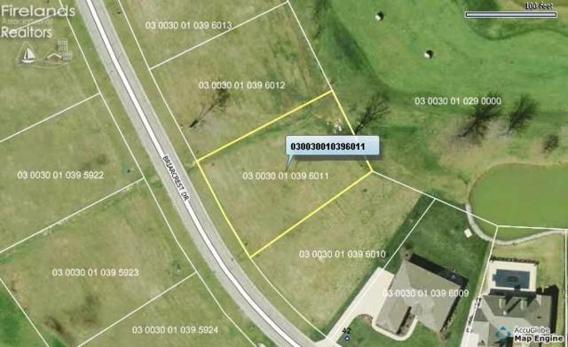 0 Briarcrest Drive Sec 3 Gl 11 Sub, Norwalk, OH 44857 (MLS #20192482) :: The Holden Agency