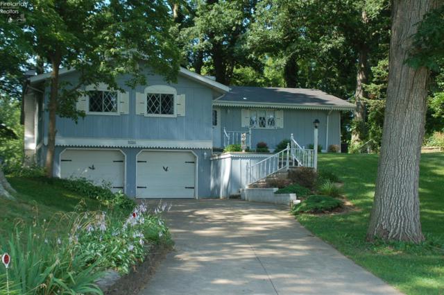 2603 Scheid Road, Huron, OH 44839 (MLS #20193420) :: Brenner Property Group   Keller Williams Capital Partners