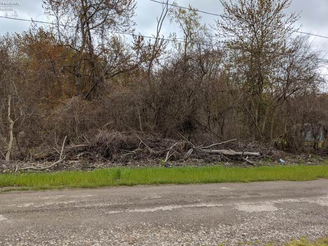 302 Fairway, Middle Bass Island, OH 43446 (MLS #20201798) :: Simply Better Realty