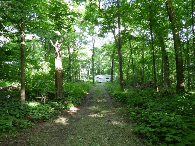 693 New Colony Lot 46 Pt. N Of, Put-In-Bay, OH 43456 (MLS #20202525) :: The Holden Agency