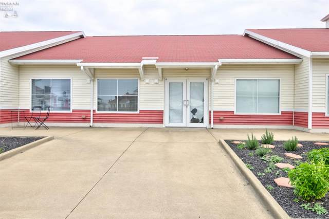 3890 Harbor Light Landing Drive, Port Clinton, OH 43452 (MLS #20204628) :: The Holden Agency