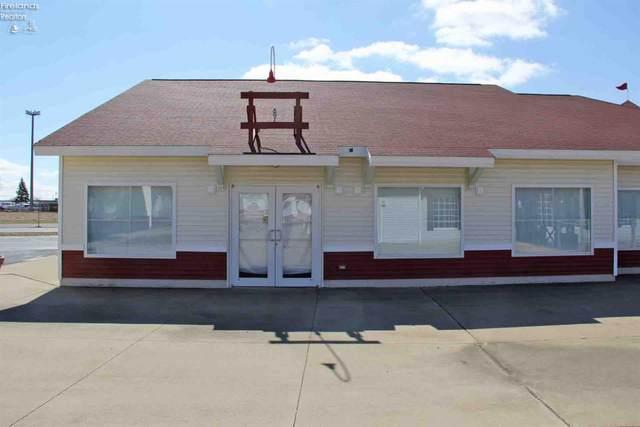 3924 Harbor Light Landing Drive, Port Clinton, OH 43452 (MLS #20204629) :: The Holden Agency
