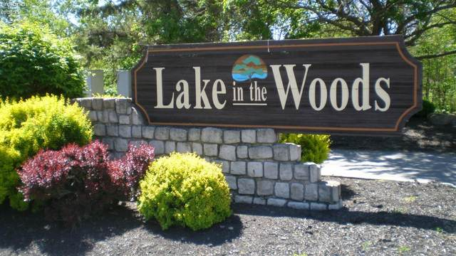 3570 E Wood Hill Lot 23Lake In T, Port Clinton, OH 43452 (MLS #20210440) :: The Holden Agency