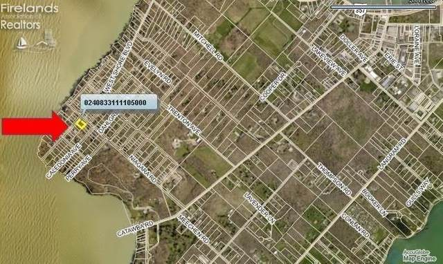 0 Dupont Lots 181-183 Victory Park Lo, Put-In-Bay, OH 43456 (MLS #20212355) :: Simply Better Realty