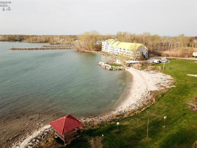 400 Swartz #307, Middle Bass Island, OH 44060 (MLS #20213714) :: Simply Better Realty