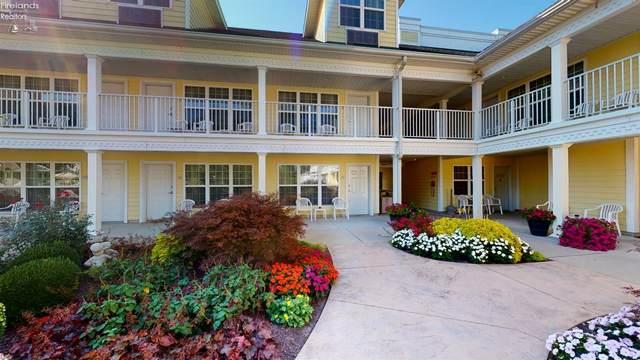 411 Lakeshore, Kelleys Island, OH 43438 (MLS #20214040) :: Simply Better Realty