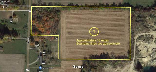 14569 State Route 511, Oberlin, OH 44074 (MLS #20214179) :: Simply Better Realty
