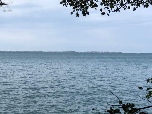 1110 W Lakeshore Drive 342, E 1/2 341 , Kelleys Island, OH 43438 (MLS #20212638) :: Simply Better Realty