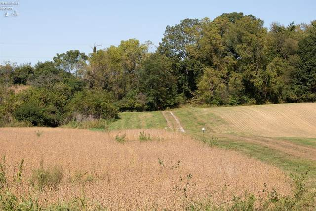 0 Mason Road Parcel Consists, Milan, OH 44846 (MLS #20214213) :: Simply Better Realty
