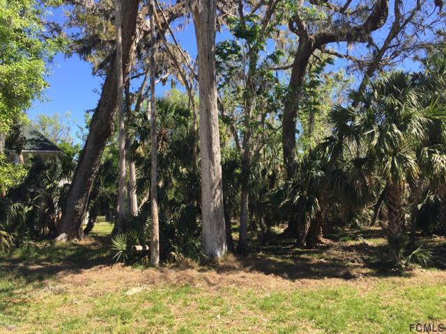 0 Audubon Ln, Flagler Beach, FL 32136 (MLS #236676) :: RE/MAX Select Professionals