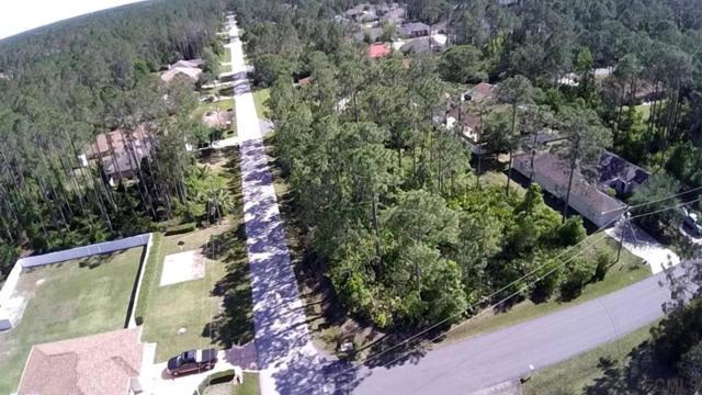 1 Regina Lane, Palm Coast, FL 32164 (MLS #237994) :: Pepine Realty