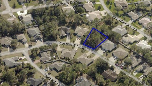 18 Prosperity Lane, Palm Coast, FL 32164 (MLS #238115) :: RE/MAX Select Professionals